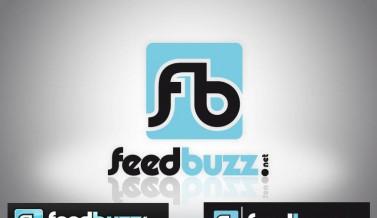 Identité visuelle du site feedbuzz.net